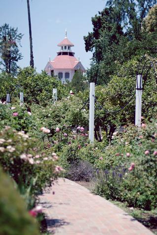 The Arboretum in Arcadia, CA | Inspired By Annetta Bosakova