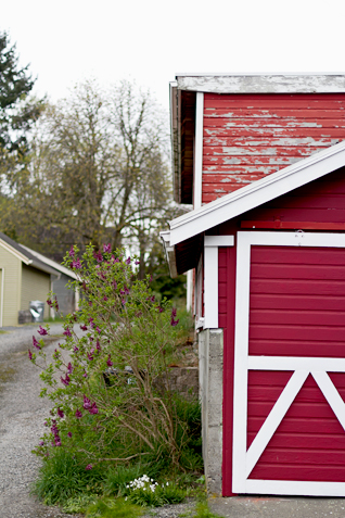 Snohomish, Washington | Inspired By Annetta Bosakova